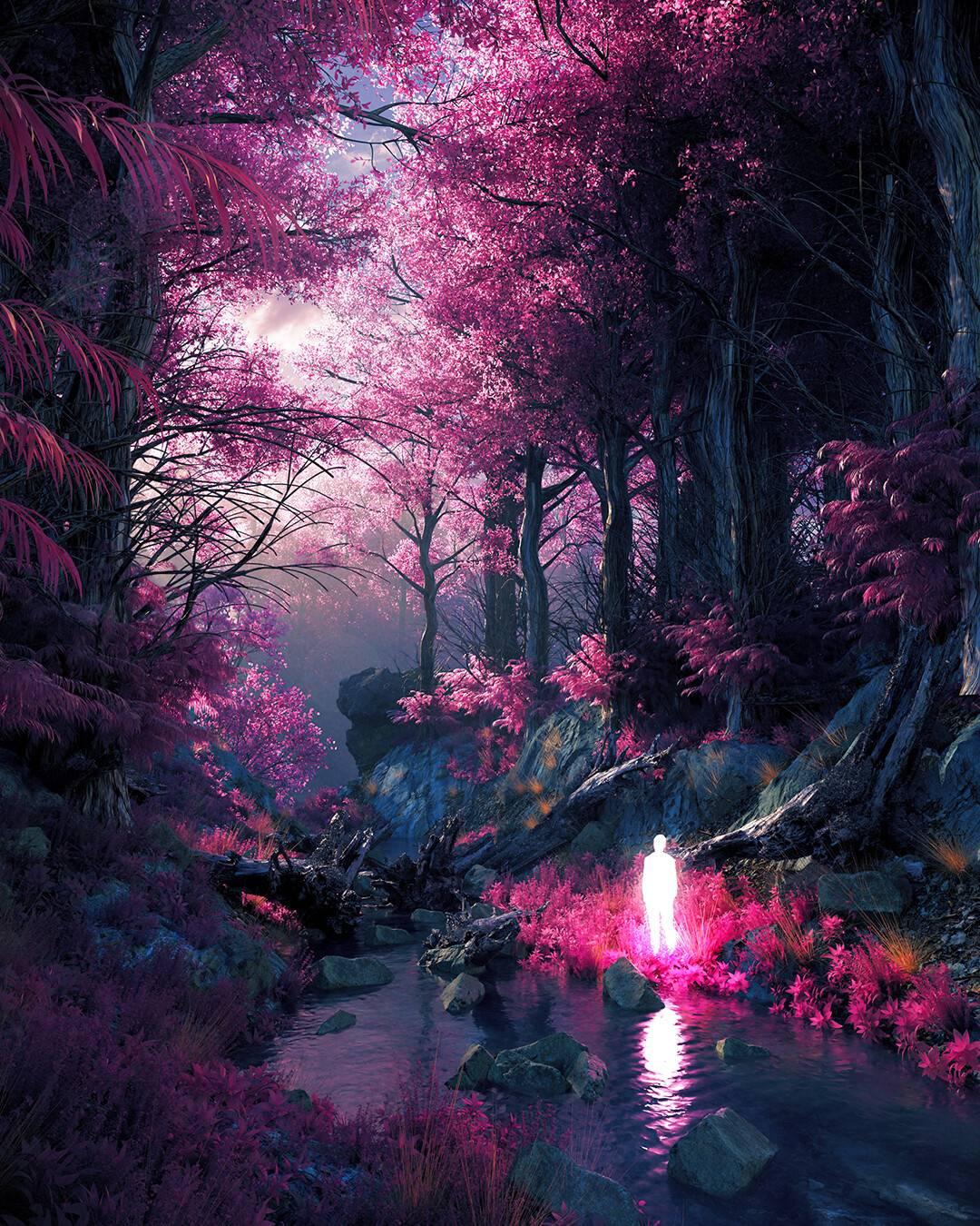 undergrowth-by-josh-pierce-a25575xazn-1080x1350.jpg